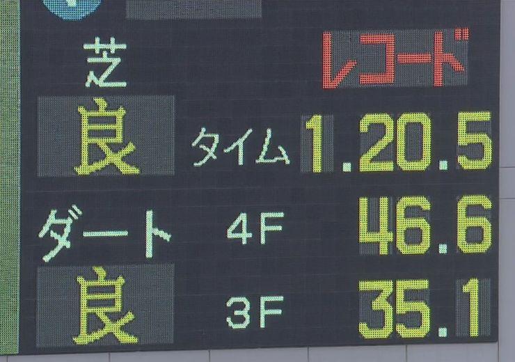 20141124shumeigiku_record