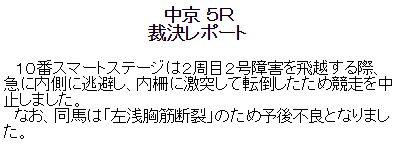 20150124chukyo5Rrp